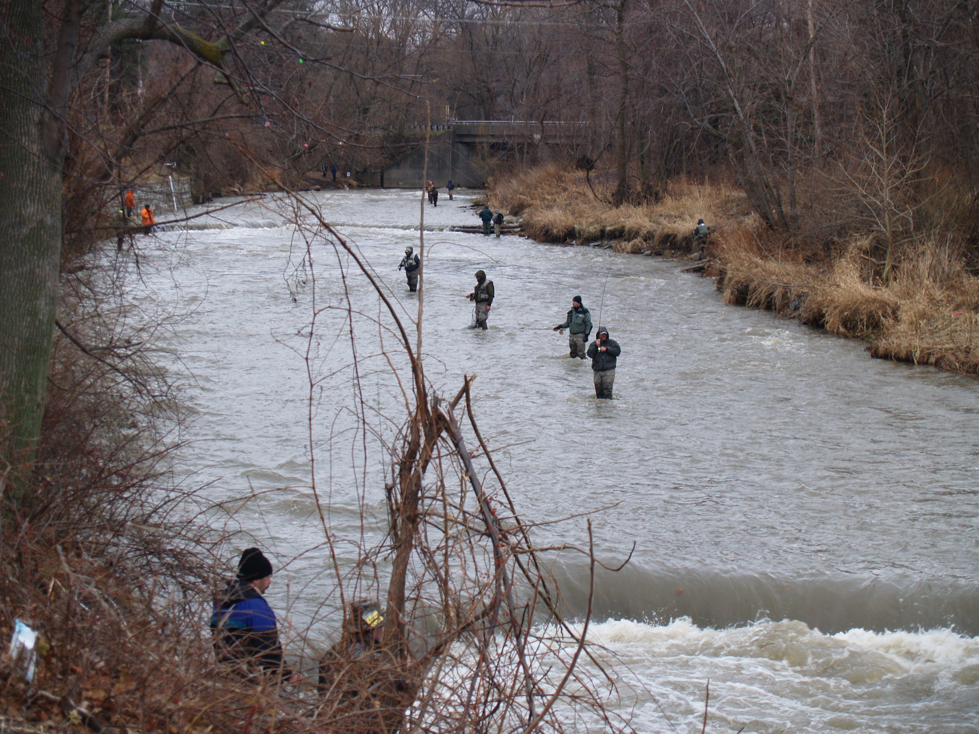 The fishing report tom sarver projects for Fishing in pa