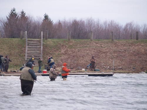Waders near the dam at the opening day of trout season, Locust Lake, PA.